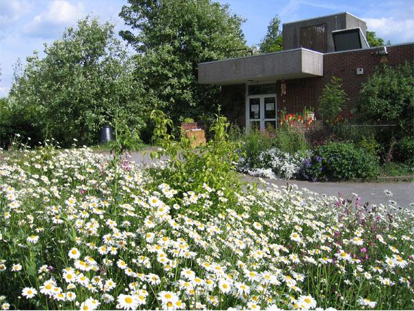 Biomass boiler Centre and Forest Garden