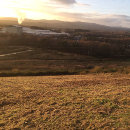 Teigngrace Meadow Nature Reserve