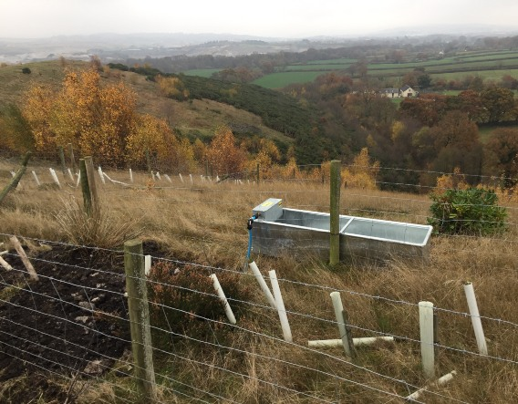 Cattle trough and fence installed. Image courtesy of Devon Wildlife Trust