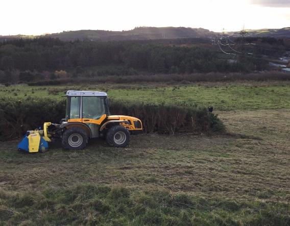 Machinery clearing scrub. Image courtesy of Devon Wildlife Trust
