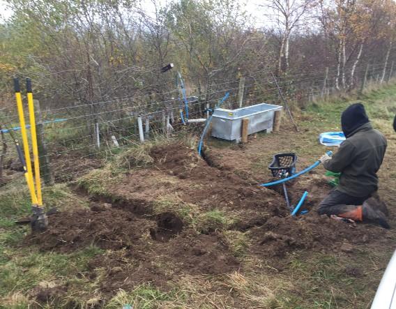 Water supply work in progress. Image courtesy of Devon Wildlife Trust